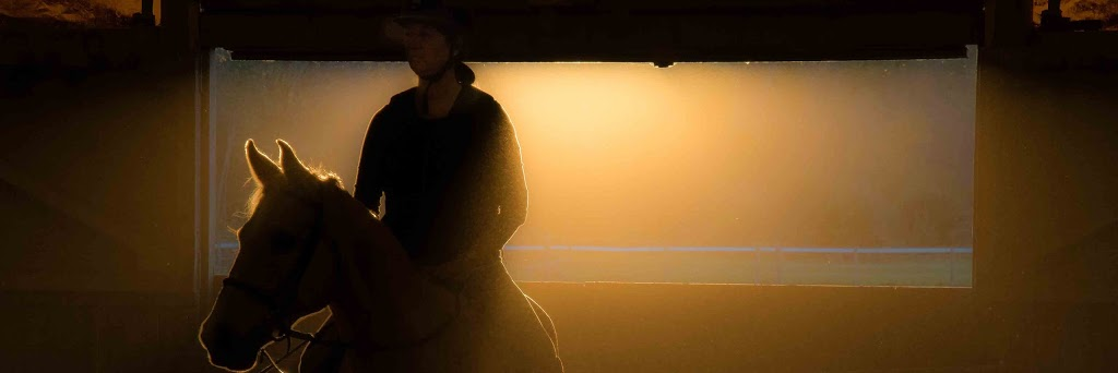 Gwen Van Kleef Riding lessons